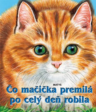 Mačička pics mačička pics